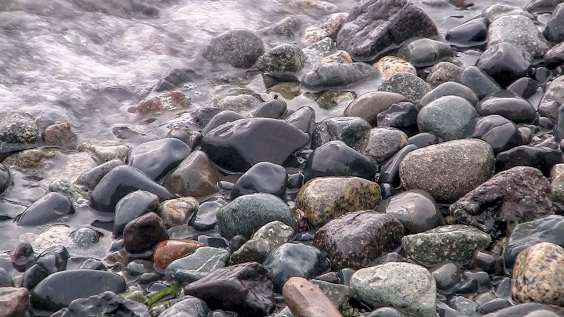 shore rocks